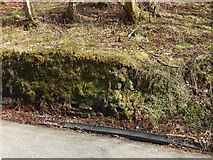NS3678 : Roadside wall: detail by Lairich Rig