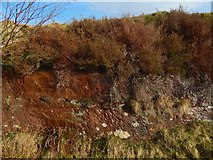 NS3678 : Old sandstone quarry: detail by Lairich Rig