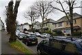 SW8032 : Houses on Killigrew Street, Falmouth by Ian S