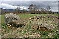 NJ6727 : Old Rayne Recumbent Stone Circle (11) by Anne Burgess