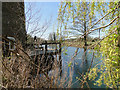 TM3851 : A small part of the mill pond by Adrian S Pye