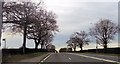 SJ7176 : A556 at Smoker Hill Farm entrance by John Firth