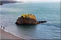 SN1300 : Gosker Rock, North Beach, Tenby, Pembs by P L Chadwick