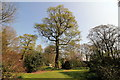 SJ6781 : The Grove at Arley Hall by Jeff Buck
