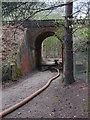 SU9155 : Railway bridge near Gapemouth by Alan Hunt