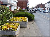 SP2871 : Warwick Road in Kenilworth by Mat Fascione