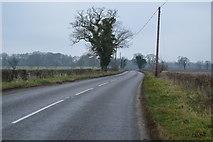 TG0806 : Norwich Rd by N Chadwick