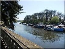 TQ1673 : The Thames at Twickenham by Christine Johnstone