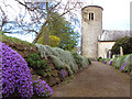 TF8332 : Flowers beside the path to St Mary's church, Syderstone by Evelyn Simak