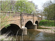 SY0785 : The bridge at Otterton by David Purchase