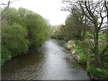 SY0887 : The River Otter, looking downstream by David Purchase