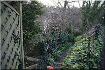 SX9364 : Path off Ilsham Marine Drive, Torquay by Ian S