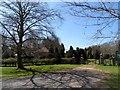 SK9816 : Start of Clipsham Yew Tree Avenue by Bikeboy