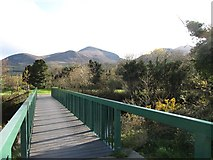 J3731 : Footbridge over the Shimna River in Islands Park by Eric Jones
