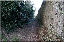 SX9364 : Footpath leading to Anstey's Cove, Torquay by Ian S