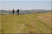 SO2455 : A pair of walkers on Hergest Ridge by Philip Halling