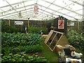 SE3254 : Wartime garden by DS Pugh