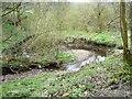 SE0917 : Longwood Brook [1] by Christine Johnstone