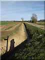 TM3666 : Newly dug ditch off Kelsale Road by Geographer
