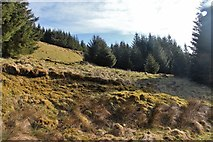 NN0308 : Steep forest clearing at the mouth of Coire Dubh-ghlas by Alan Reid