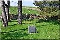 SC4790 : Quaker burial ground, Ballafayle by Jim Barton