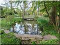TQ2997 : Japanese Garden, Trent Park, Enfield by Christine Matthews
