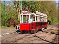SD8303 : Blackpool and Fleetwood Vanguard Tram, Heaton Park Tramway Museum by David Dixon