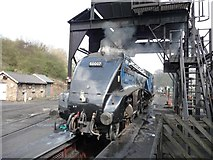 NZ8204 : Sir Nigel Gresley at Grosmont Yard by Christine Johnstone
