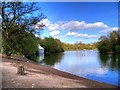 SD8303 : Boating Lake at Heaton Park by David Dixon