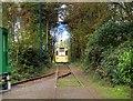 SD8303 : Heaton Park Tramway by David Dixon