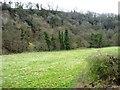 NZ8506 : Flat farmland, north bank of the Esk, with Scar Wood beyond by Christine Johnstone