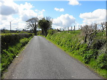 H4269 : Fireagh Road, Fireagh by Kenneth  Allen