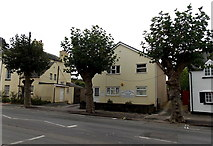 SO5012 : Pollarded trees,  Drybridge Street, Monmouth by Jaggery