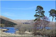 NT2320 : St Mary's Loch by Leslie Barrie