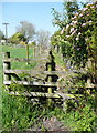 SE0723 : Sowerby Bridge FP079 (8), stile and path past Lower Wat Ing by Humphrey Bolton