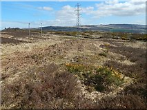 NS3778 : Signs of surface quarrying by Lairich Rig