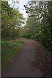 NS5666 : Kelvingrove Park by Richard Sutcliffe
