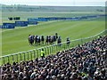 TL6262 : Approaching the winning line in the 2,000 Guineas  - Rowley Mile Racecourse, Newmarket by Richard Humphrey