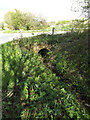 TM3372 : Culvert under Heveningham Long Lane by Adrian Cable