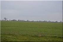 TG0705 : Farmland north of Carleton by N Chadwick