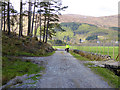 NH3154 : Back road to Dalbreac by Oliver Dixon