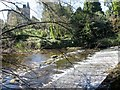 SE1664 : Weir  on  River  Nidd  with  Castlesteads  beyond by Martin Dawes