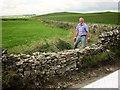 SK1252 : Dry stone walling, Ilam-moor Lane by Derek Harper