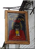 "SK0267 : Pub sign at ""The New Inn"" Flash by Neil Theasby"