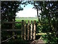 SK4430 : Gate in a hedge at a footpath junction by Ian Calderwood