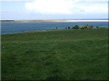 NU1535 : Coastal grazing, Kiln Point by JThomas