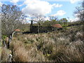 H5383 : Derelict property, Glenmacoffer by Kenneth  Allen
