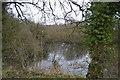 TG0605 : Pond by Coston Lane by N Chadwick