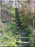 SD9927 : Hebden Royd FP7 (2)  Steps near Keighley Road, Hebden Bridge by Humphrey Bolton