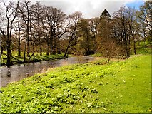 SD7152 : River Hodder, Slaidburn Village Green by David Dixon